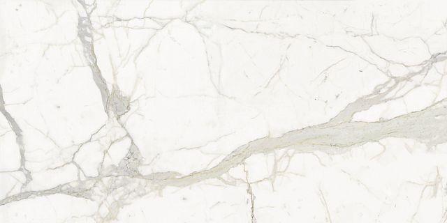 Maximum Marmi Calacatta Variation D.jpg