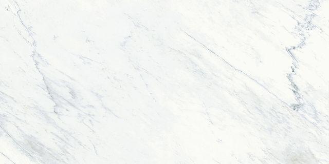 Michelangelo_Pattern C.jpg